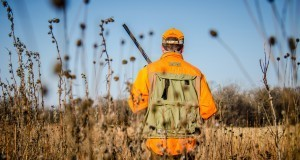 Ruim 1 op 3 Nederlanders wordt elk jaar gehunt