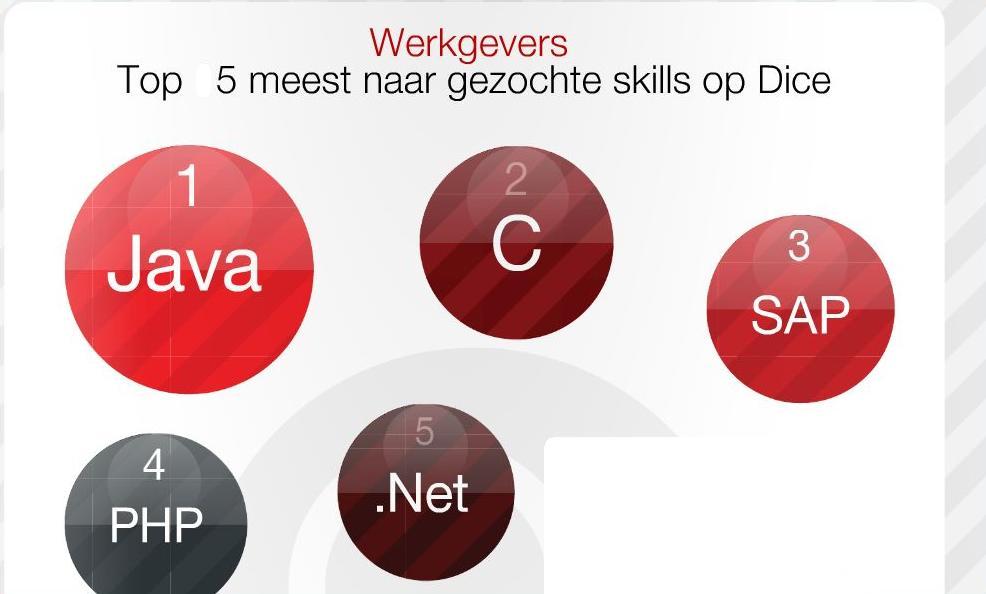 dice werkgevers gezocht 6