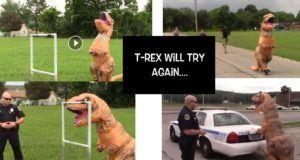 t-rex politie