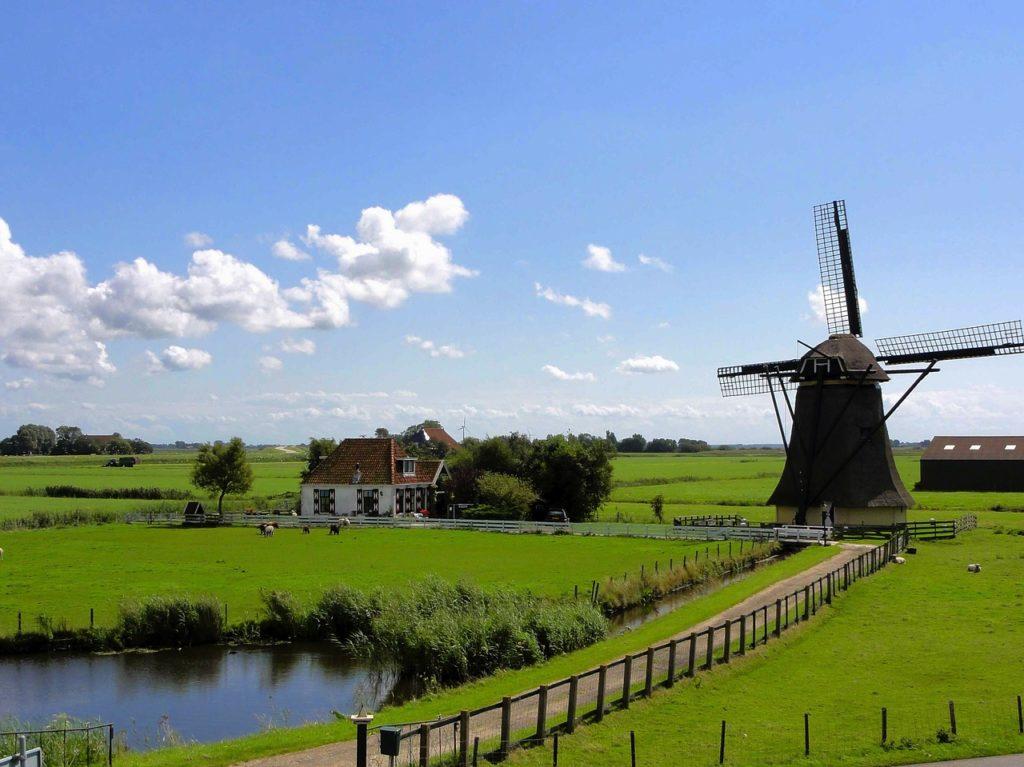 Talent Acquisition in Nederland: de visie van Veronne van der Meijs (Randstad Groep Nederland)