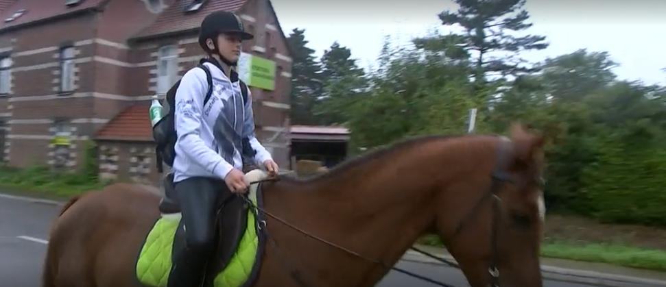 Funny Friday: er staat een paard in de gang