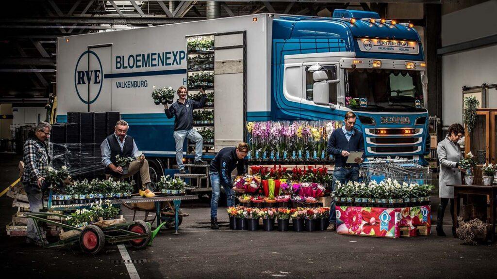 rve plantenhandel site