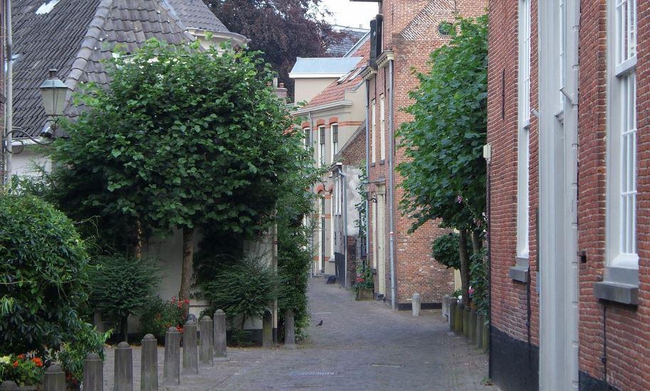 Wim op woensdag: Hoe sociaal is het leven in het dorp Fint nou precies?
